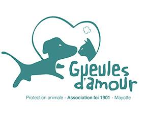 logo Association Gueules d'Amour Protection animale Mayotte